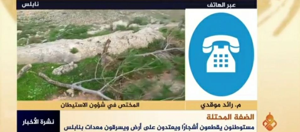 رائد موقدي للقدس اليوم: يجب مساندة المزارع الفلسطيني ودعم صموده أمام الهجمة الشرسة على أرضه