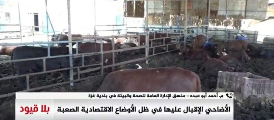 م.أبو عودة للقدس اليوم: بلدية غزة تقرر عدم صلاحية الذبح العشوائي في المدينة