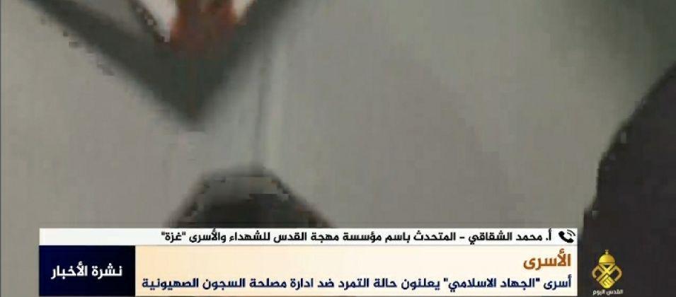 """الشقاقي للقدس اليوم: أسرى """"الجهاد"""" يعلنون التمرد احتجاجاً على سياسات إدارة سجون الاحتلال التعسفية"""